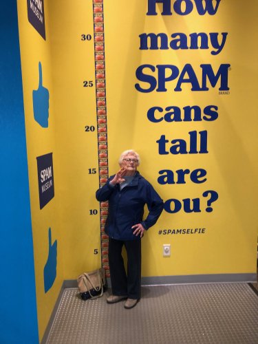 How tall is Alice in Spam cans ?