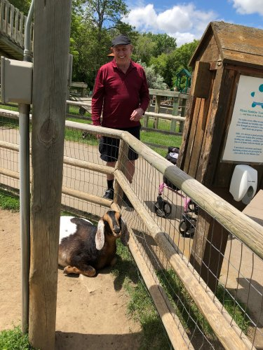 George checking out a goat at the Dakota Zoo! We had so much fun looking at all the animals!