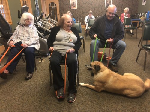 Exercise class is no dog gone joke
