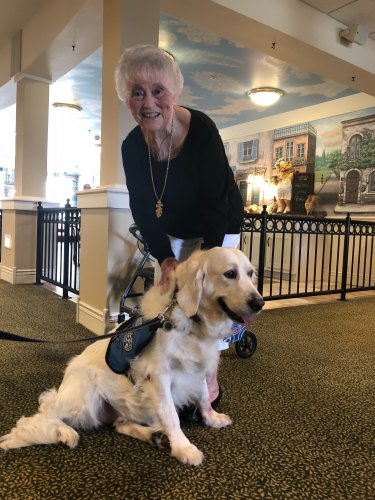 Jenni is getting  lots of love from comfort dog Sterling