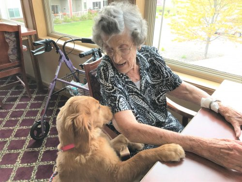 Gigi visiting with Jeanne during puppy time!