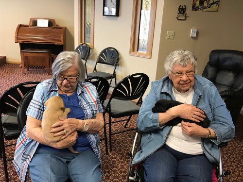Shirlea and Norma enjoying the puppies!