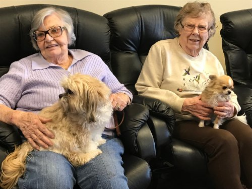 Shirlea & Dorothy enjoying time with the dogs!