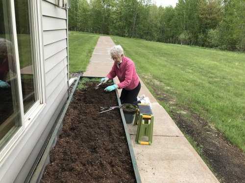 Mary planting the wave flowers!