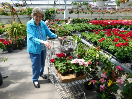 Francis is having fun shopping for flowers on a beautiful Spring day!