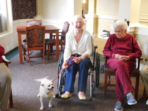 Marie's sure glad she can have her friend/companion, Rosco, with her here at Primrose.  He was a special 'Show and Tell'.