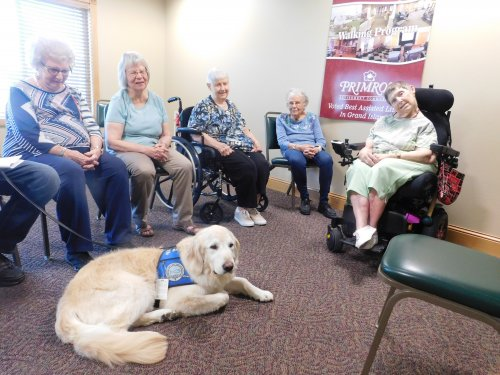 It's always fun to have the comfort dog, 'Moses' come to Primrose to visit.
