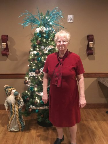 Sally wanted to get all dressed up to attend our resident Christmas party.  Isn't she lovely??