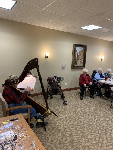 we enjoyed a harpist for Valentines Day!
