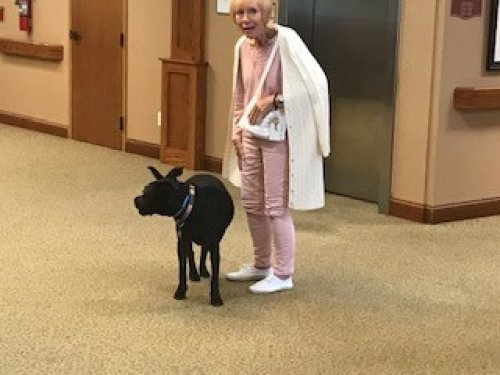 We Love when we have employees bring their pets to work! Brings a lot of smiles.