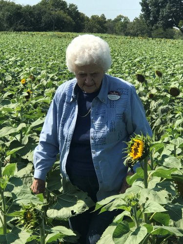 Dorothy seeking out the perfect flower at the sunflower patch.