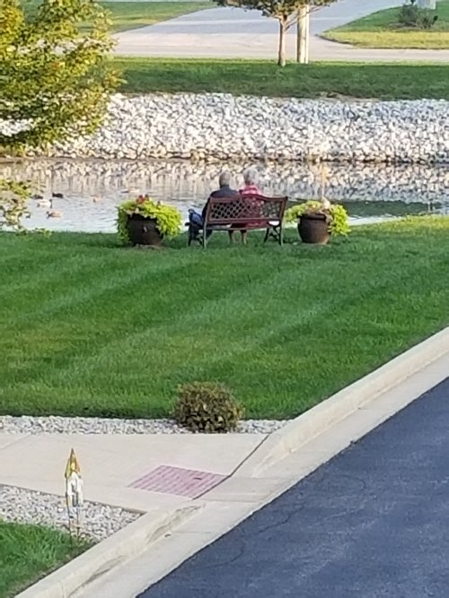 You can always find these 2 love birds by the pond just enjoying their time.