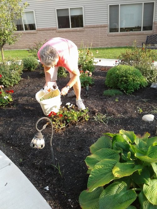 We appreciate that Dorothy M. is weeding The Garden at Primrose Lima.