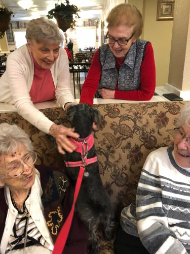 Jean, Shirley, Jay and Betty enjoy a visit from Piper.