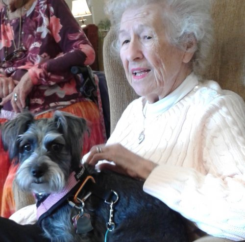 Piper was glad to see Betty! She jumped on her lap and laid down.