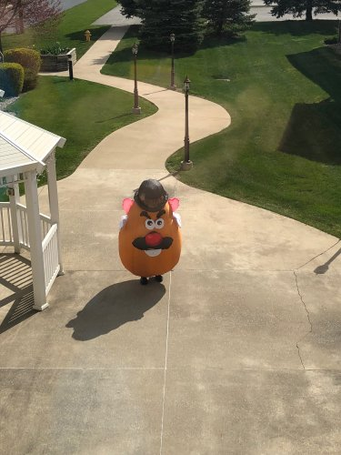 Mr Potato Head is trying to get in.