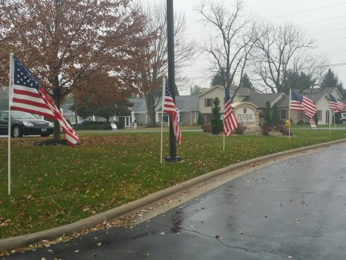 In honor of Veteran's Day, the Lima Exchange Club posted over 50 flags at Primrose of Lima, lining the driveway and parking area and providing a breathtaking patriotic tribute to all of our Primrose Veterans.