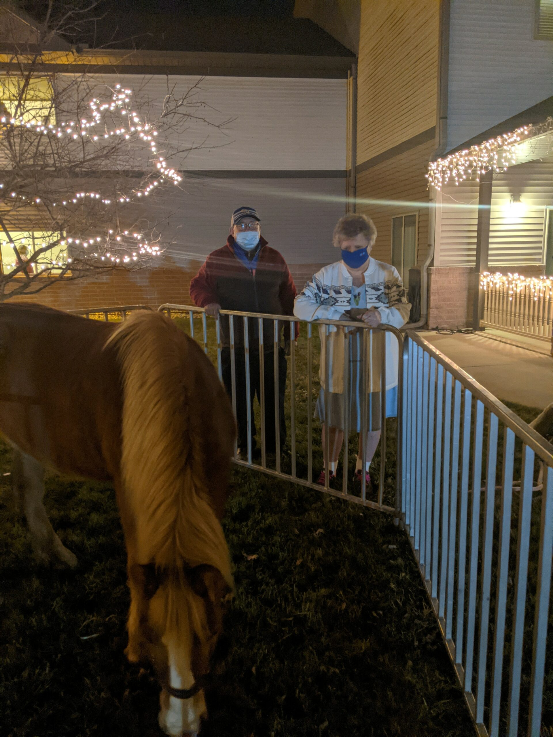 Rachel and Dave were checking out the horse at the Live Nativity that Primrose of Lima had.