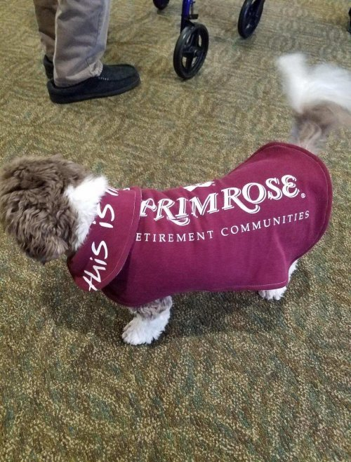 We love our furry friends and even got one his own jacket!