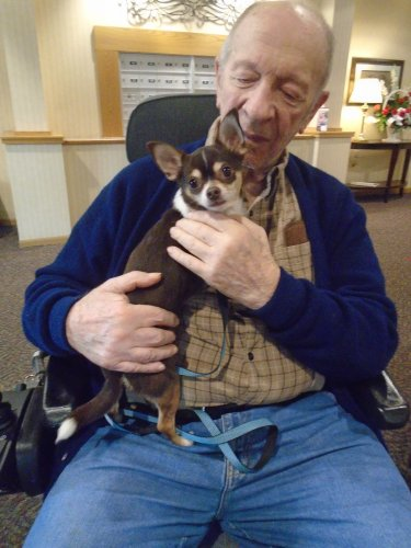 4H pet pals visit with residents with fun and furry pals