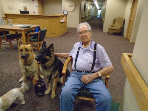 Bob with our therapy dogs, Axel, Brodie and Viola