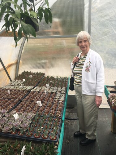 Dee enjoyed checking out the baby succulent plants at The Groovy Plant Ranch.