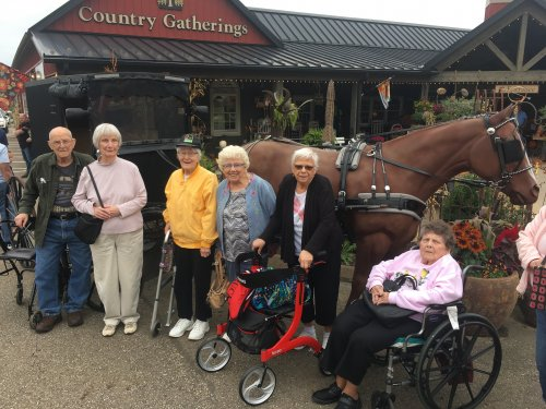 Our group standing in front of a horse and buggy in Amish Country.