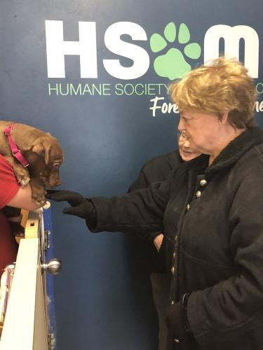 Diann at the Humane Society