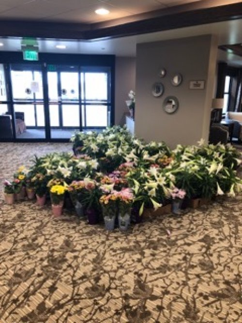 A local retailer donated all of their flowers to us in light of the Governors new orders so our seniors could enjoy them.  There were so many we shared them with several other senior livings and skilled nursing facilities throughout Midland.