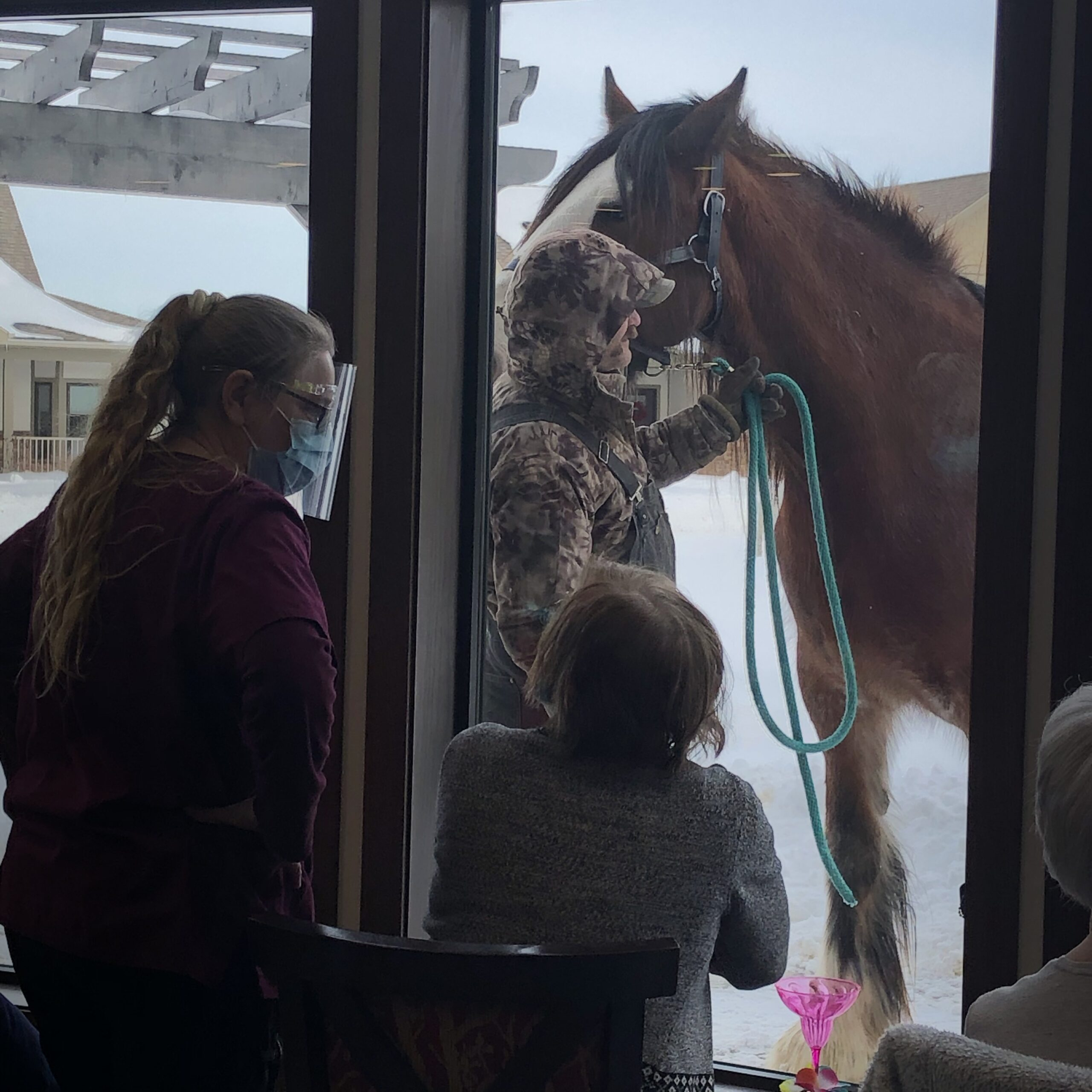 we loved see the Clydesdale