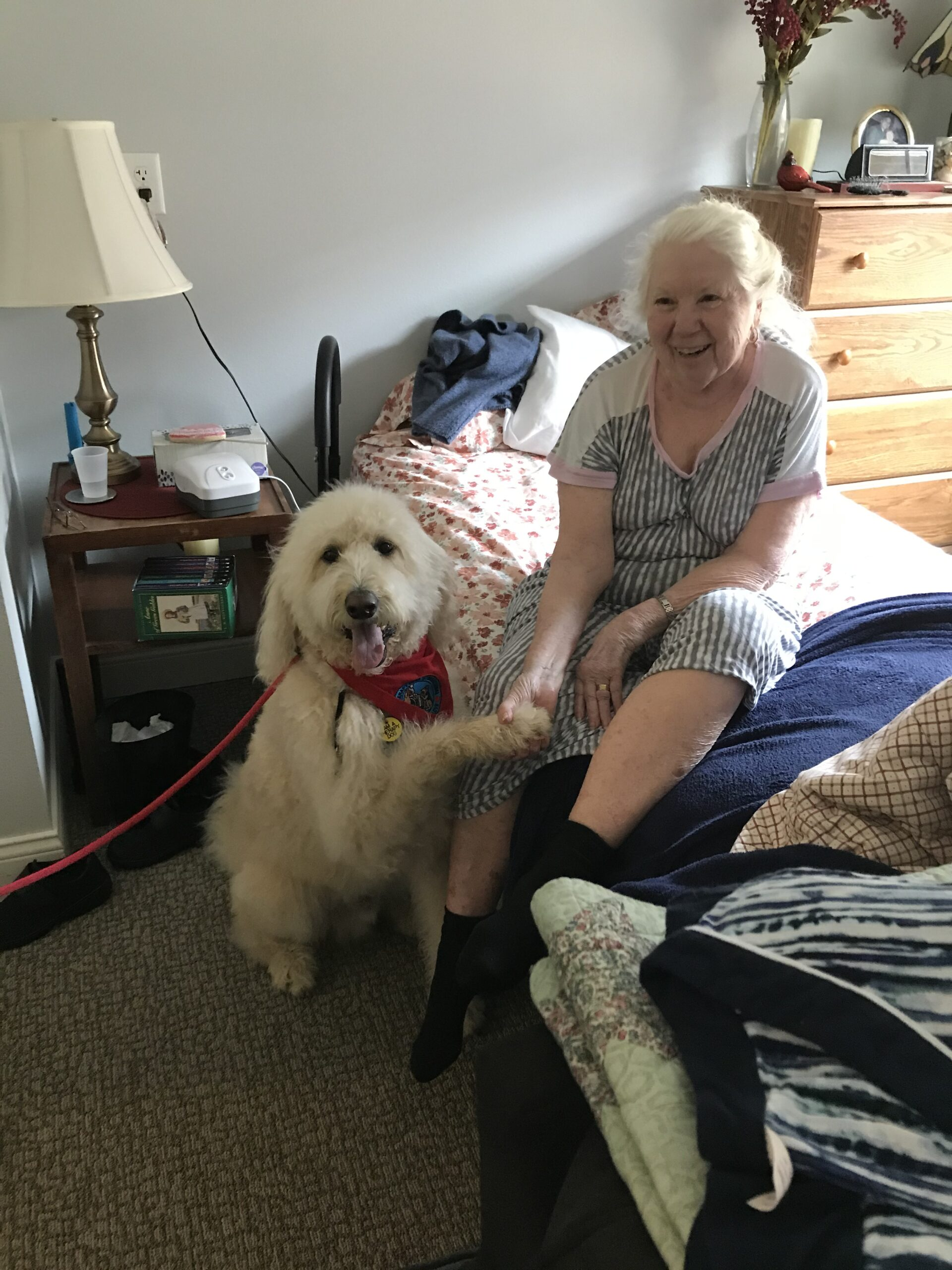 Elaine with a wake up call from Dexter the Therapy Dog