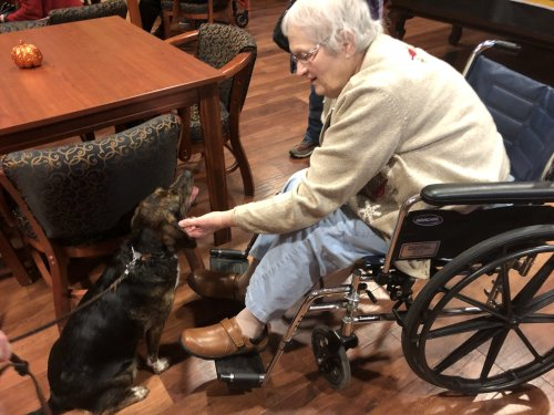 Joan is showing her love for animals! Therapy dog visits!