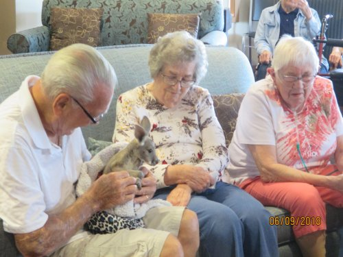 Some of our residents enjoying the animal visits.