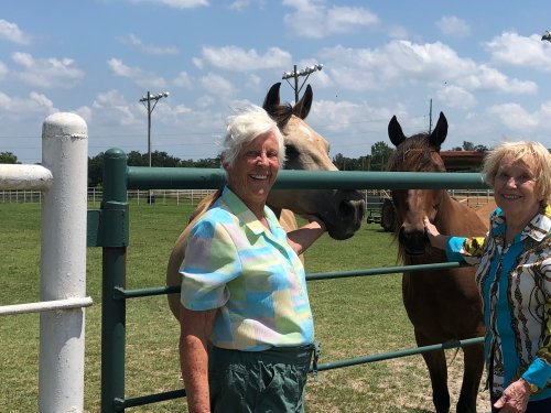 Carol and Susan meeting horses at the Horses For Healing Ranch on a sunny afternoon mystery drive!