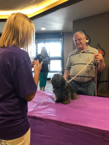 Miss Tiansu performing a trick during the Primrose Pet Show fundraiser for the Alzheimer's Association's The Longest Day event!