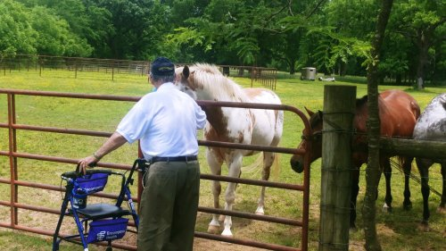 Walter made the most of the resident bus ride around town and did some Horse Therapy on the side of the road!