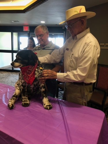 We had our first Primrose Pet Show to celebrate the Alzheimer's Association's The Longest Day event! Residents showed off their prized pups and residents could vote $1 for their favorite! One of our resident's dogs, Miss Lulu Bella won the pet show!