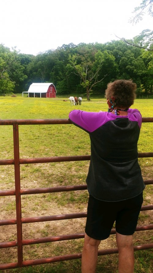 Carolyn made the most of the resident bus ride around town and did some Horse Therapy on the side of the road!