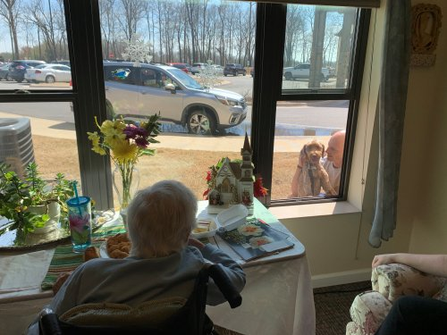 Harriet was so excited to be visited by our regular dog therapy due, Mike and his Goldendoodle, Crow! The residents love seeing familiar faces and remembered that there are so many that miss and care about them!