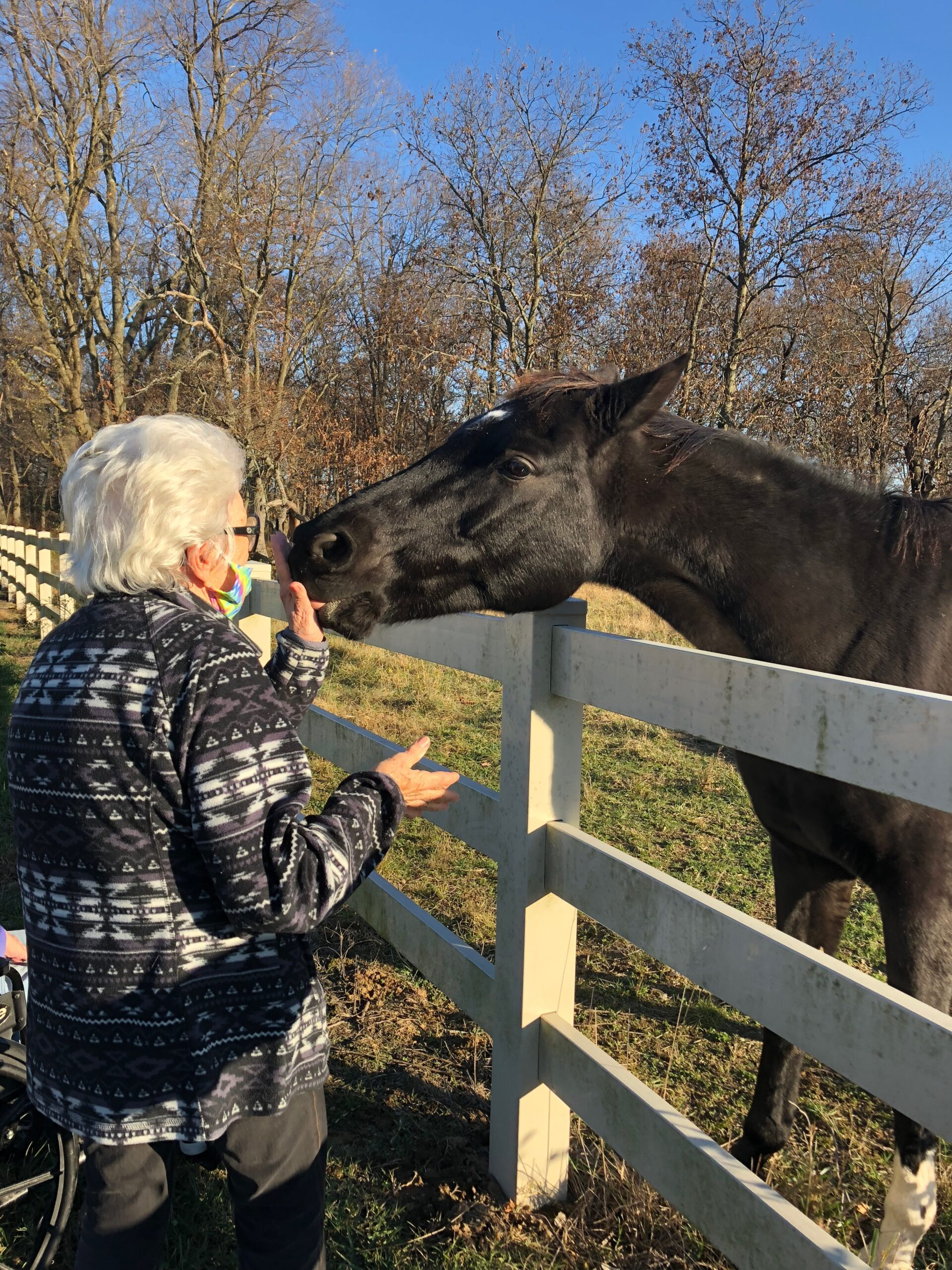 Primrose Horse Pet Therapy- Marilyn gives plenty of loving pats on the head and an apple to our next door neighbors! Residents often get to visit the horses on their afternoon Autumn Walks!