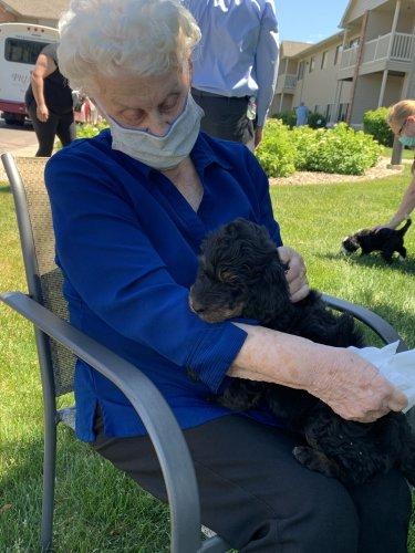 Bonnie enjoying a puppy visit!