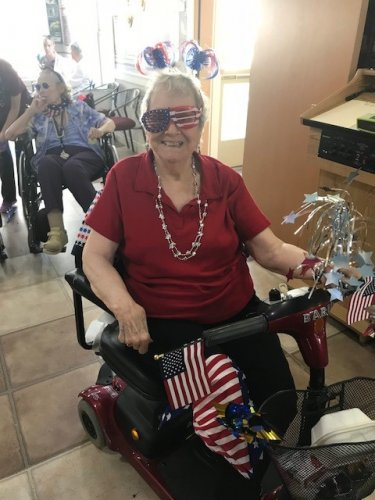 Barb in her American Gear for the 3rd Annual Primrose Parade.
