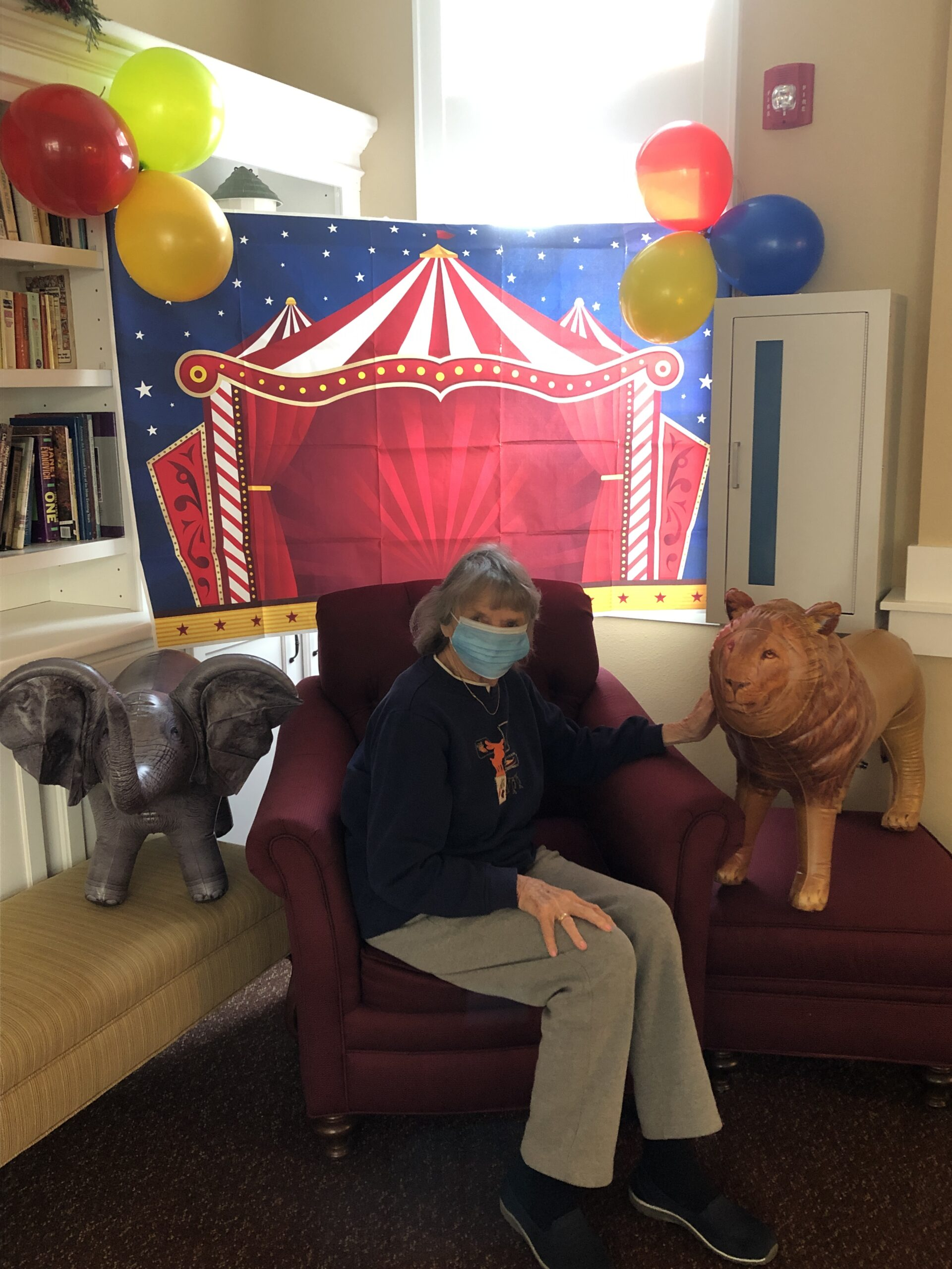 Circus Week, cotton candy, pictures with animals, history of circus. What a fun week.