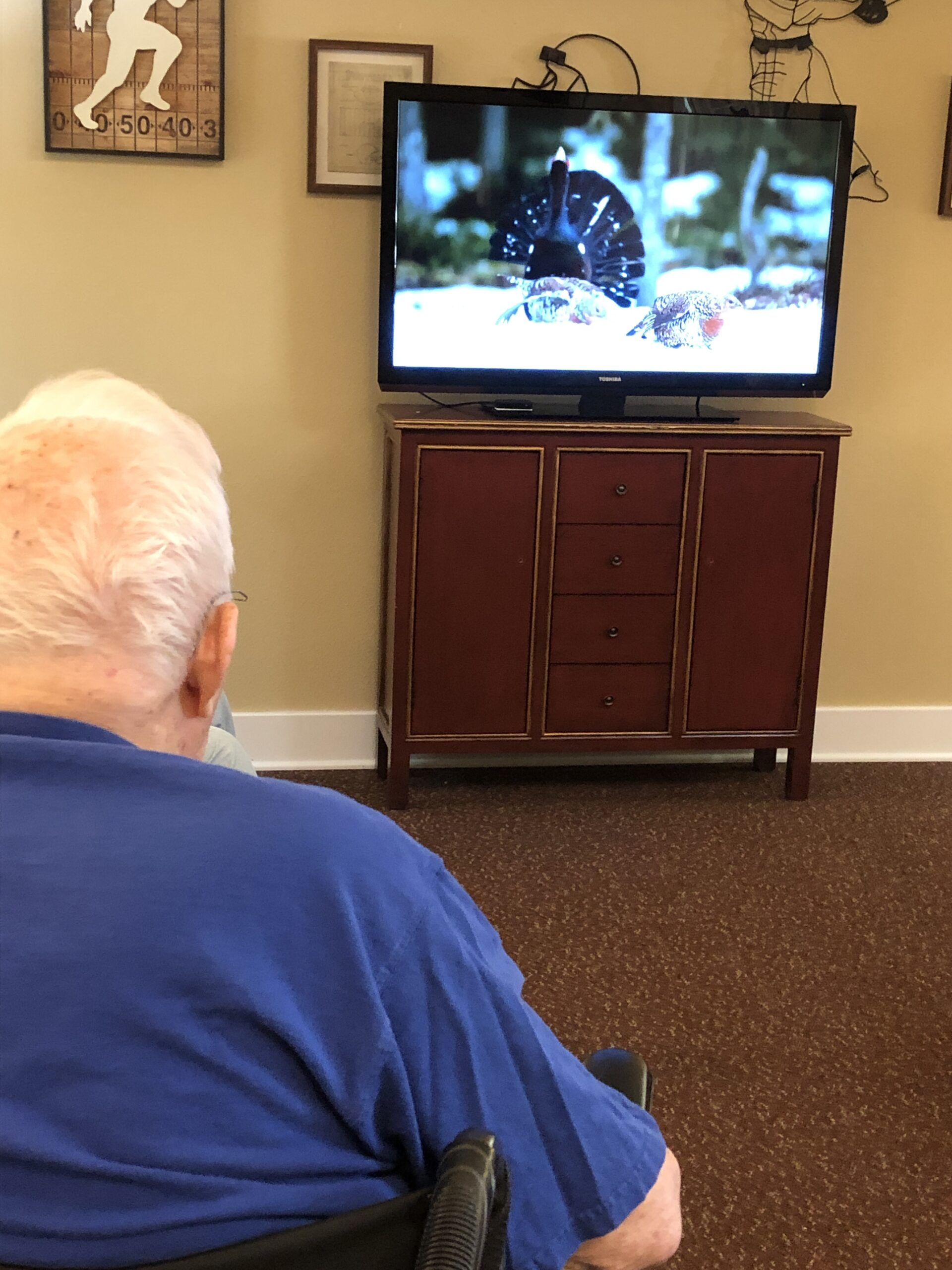 At Bird Club, we learn about different birds behaviors, calls, and other interesting facts. Bob really enjoys it.