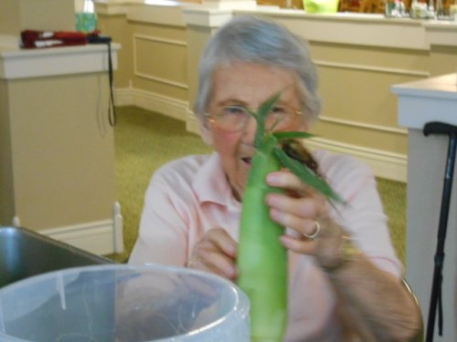 Pat is showing us ear of corn she will shuck and eat tomorrow!